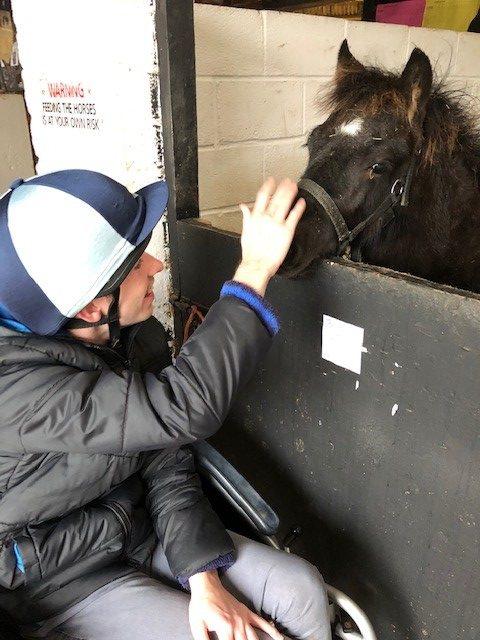 black-pony